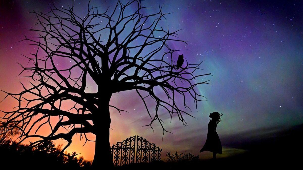 新月の夜に、絶対やってはいけない9つの事と願いを叶える21の方法