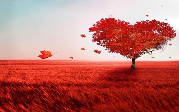 風水で恋愛運を上げようとする人が持つダメな9つの共通点