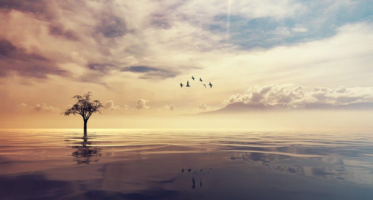 瞑想状態とはどんな状態なの?のイメージ