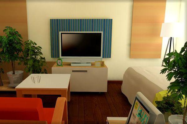 観葉植物を風水で選んで部屋の空気を快適にする7つの方法