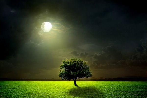 満月と新月の不思議なチカラを 正しく使うための注意点