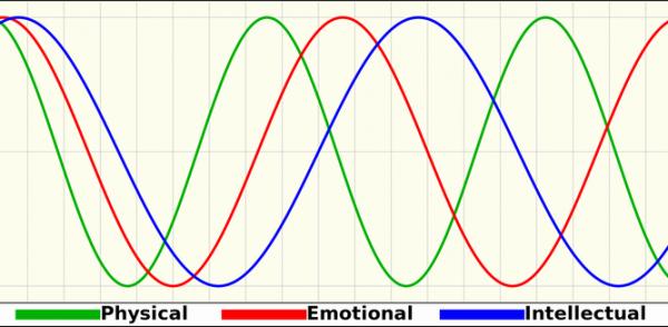 バイオリズムを使って大トラブルを未然に防ぐ5つの生活術