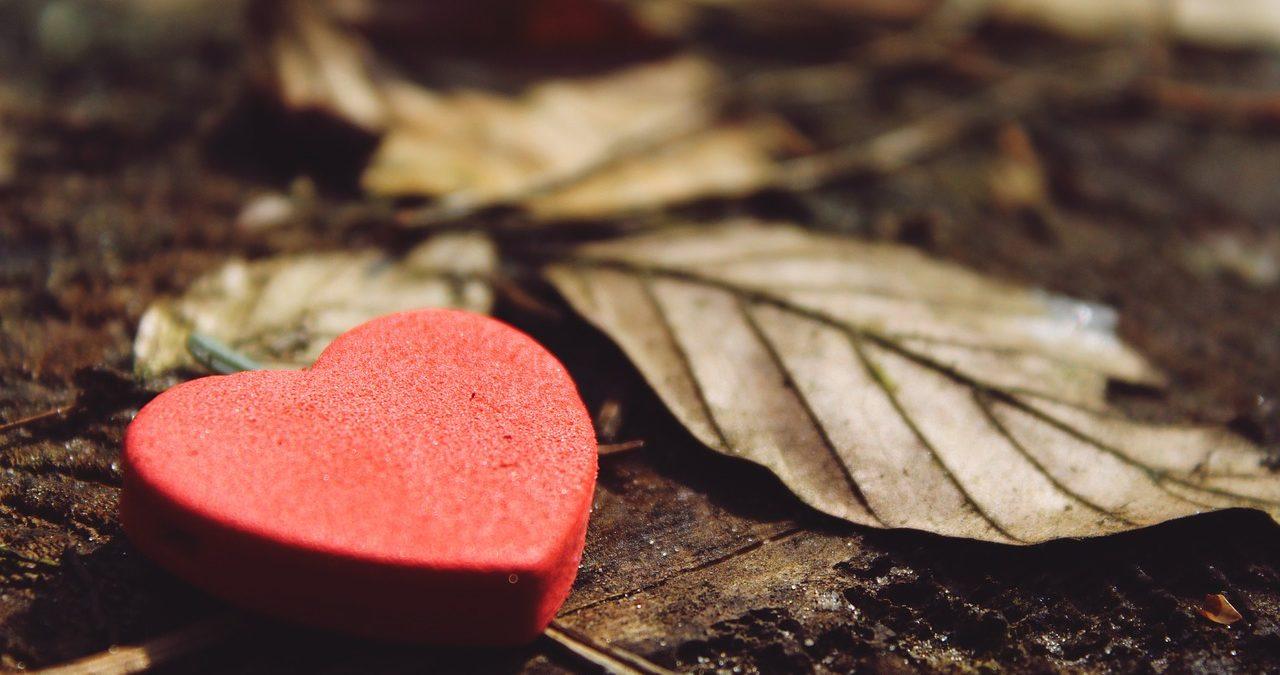 人生疲れたと感じた時に意識してほしい、上手な心の在り方とはのイメージ