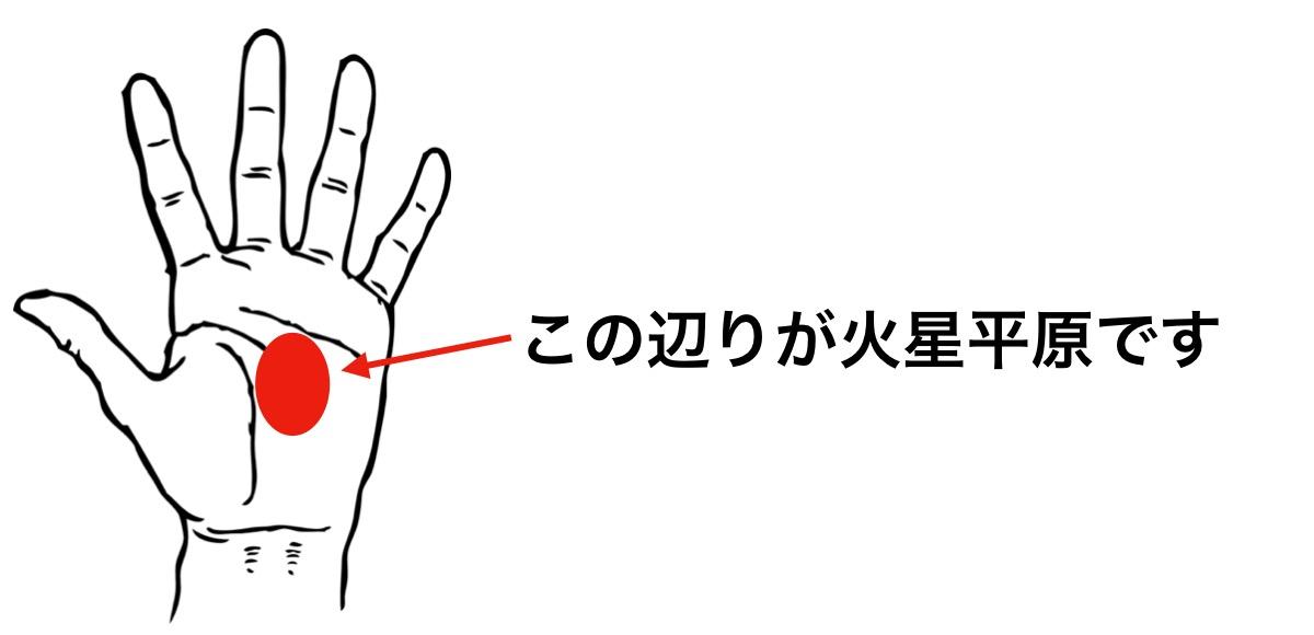 手のひらの火星平原