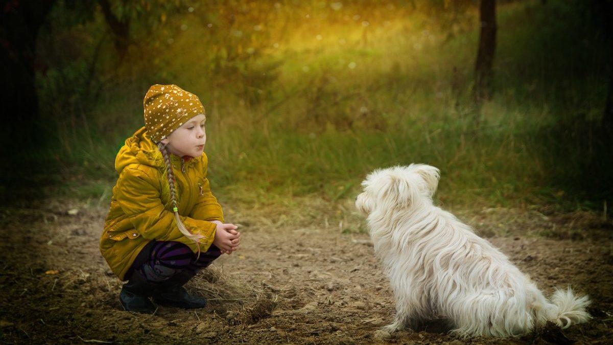 子供を思いやりのある人に育てるヒントのイメージ