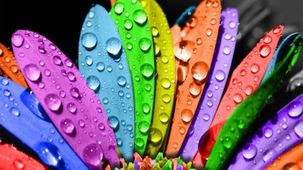カラーセラピー診断で、自分に合う色を見つけるには