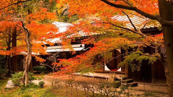神奈川県内にある秘密のパワースポット5選