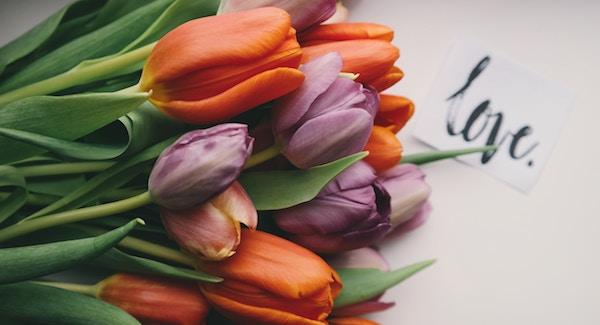 無償の愛とは何かがよく分かる7つの言葉