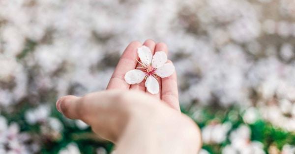 思いやりの心を育み、人に優しくなれる6つの習慣
