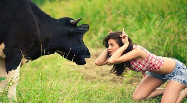 牛と戦う女性のイメージ