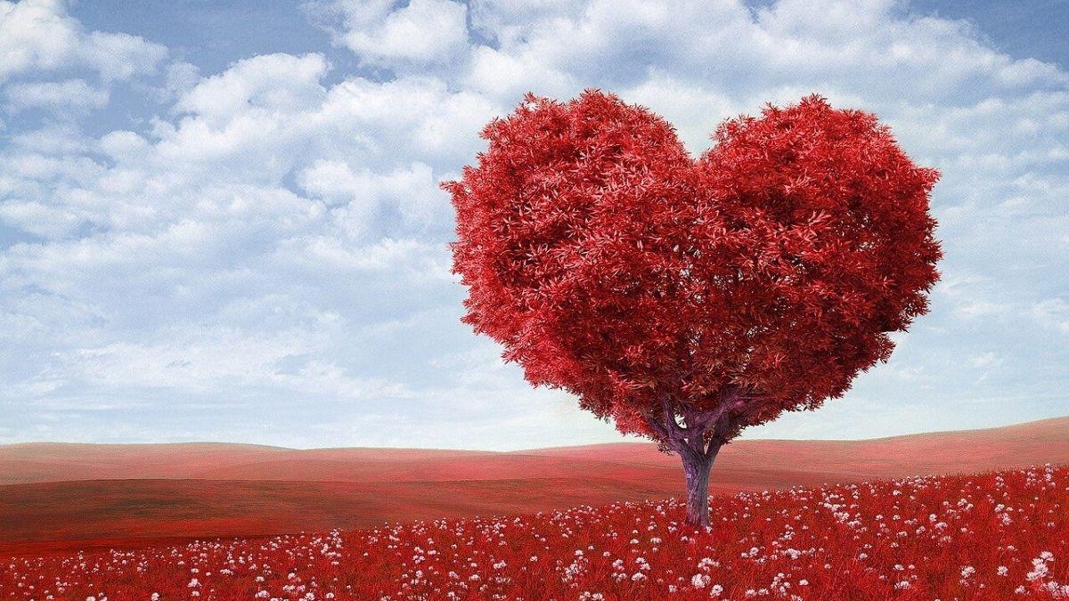 穏やかな恋愛のイメージ