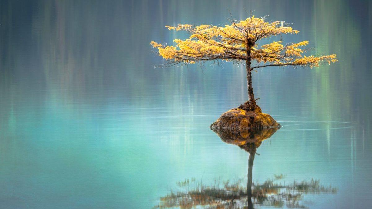 瞑想状態を表す12の感覚のイメージ