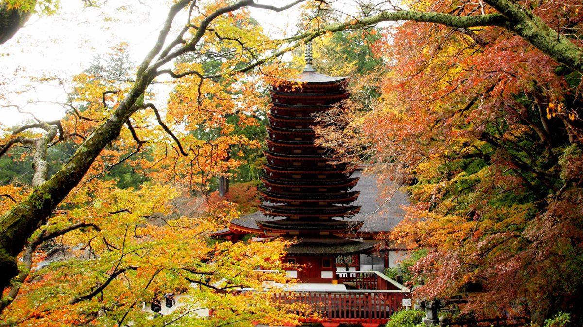 美しい緑に囲まれた、談山神社のイメージ