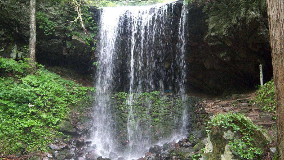 名水百選にも選ばれた子宝の水が湧く岩井滝(いわいだき)のイメージ