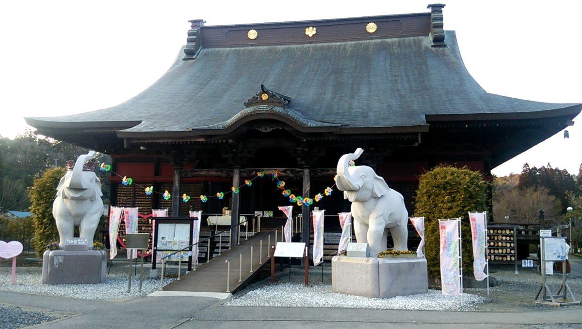 長福寿寺(ちょうふくじゅじ)の吉ゾウくんは金運のパワースポットのイメージ