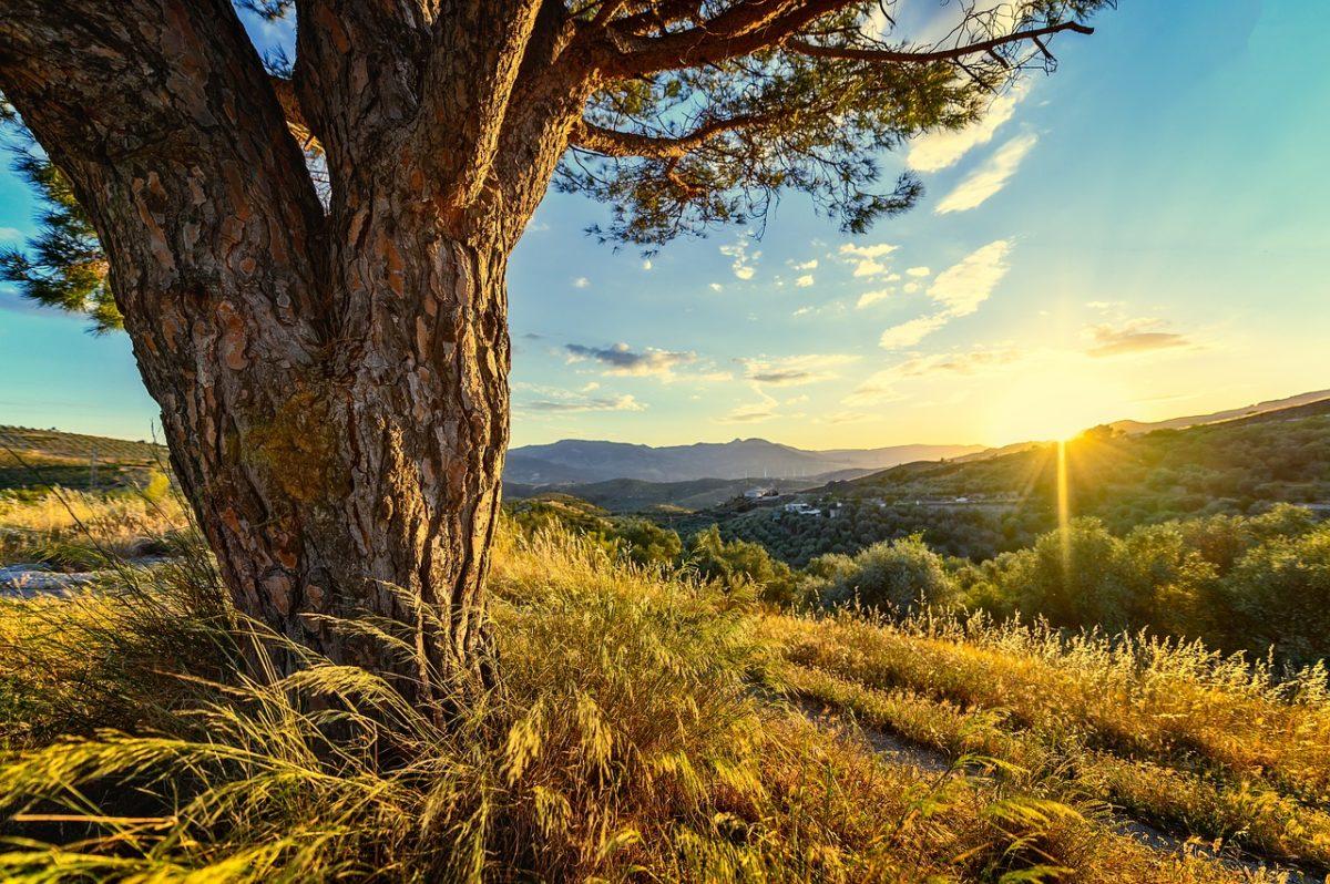 引き寄せの法則で人生を豊かにするヒントのイメージ
